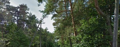 Aruküla fitness trail